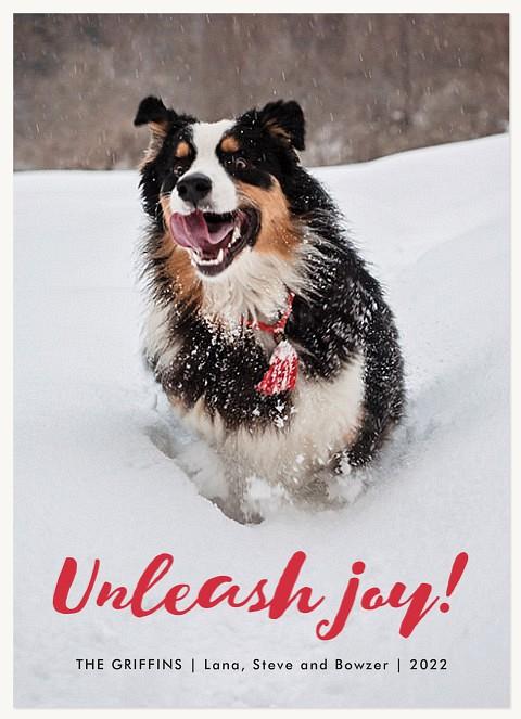 Unleash Joy Personalized Holiday Cards