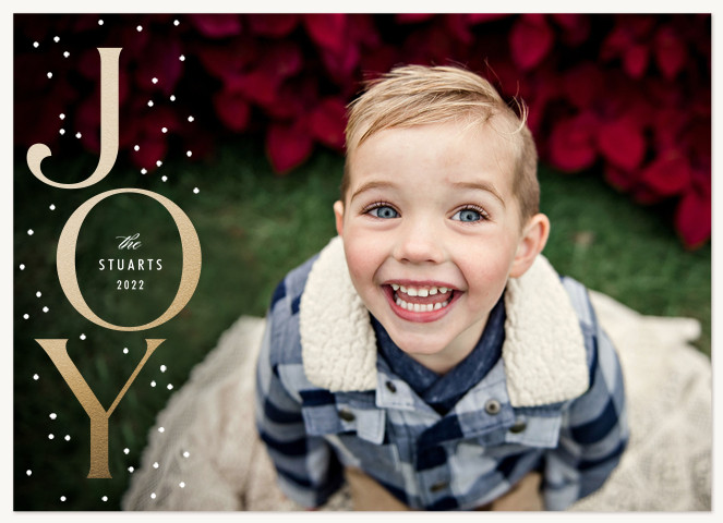 Snowy Joy Personalized Holiday Cards